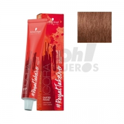 Schwarzkopf Royal Dusted Rouge 6-491 60ml