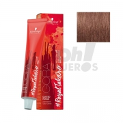 Schwarzkopf Royal Dusted Rouge 8-849 60ml