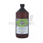 RENEWING Shampoo Davines 1000ml