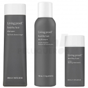 Pack Perfect Hair Day Fresh Styling Living Proof