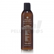 Philipo Martin's Colour Maintenance 250ml